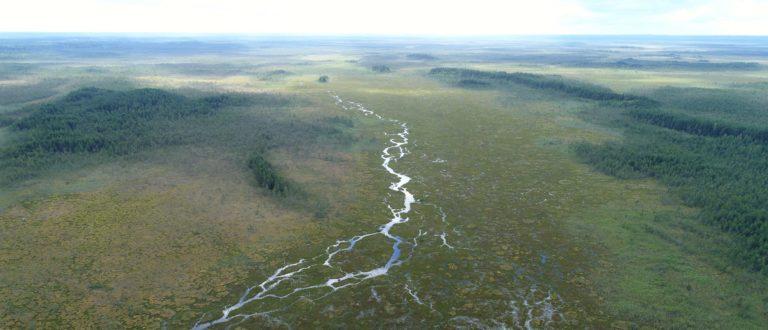 Moor in Lettland